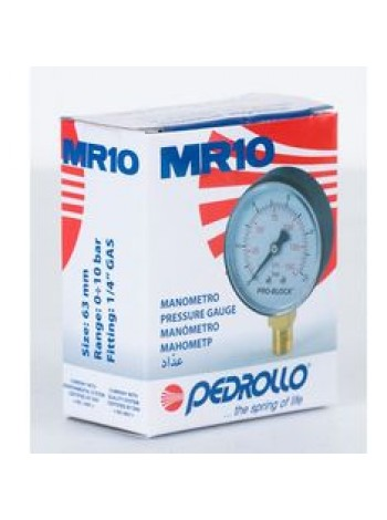 Монометр для станции водоснабжения Pedrollo италия